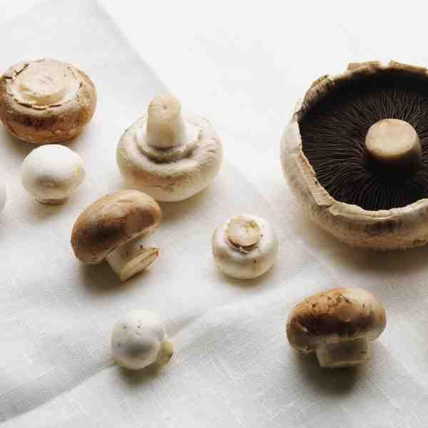 tesco_mushrooms 004